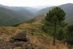 Sierra de Grazelema